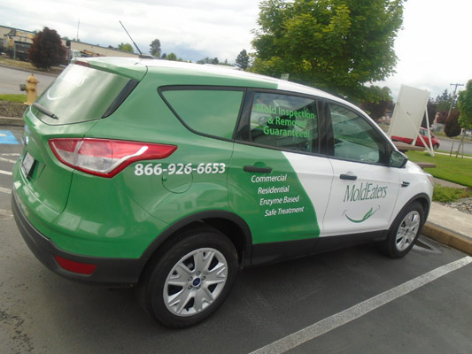 Mold Eaters Green and white Car Wrap.jpg