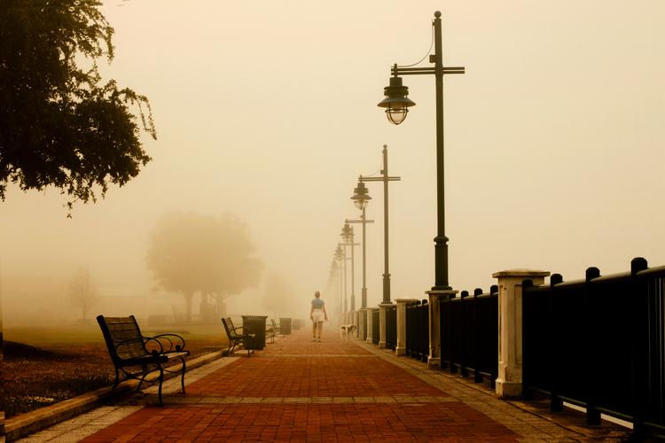 The_Fog_2-4.jpg