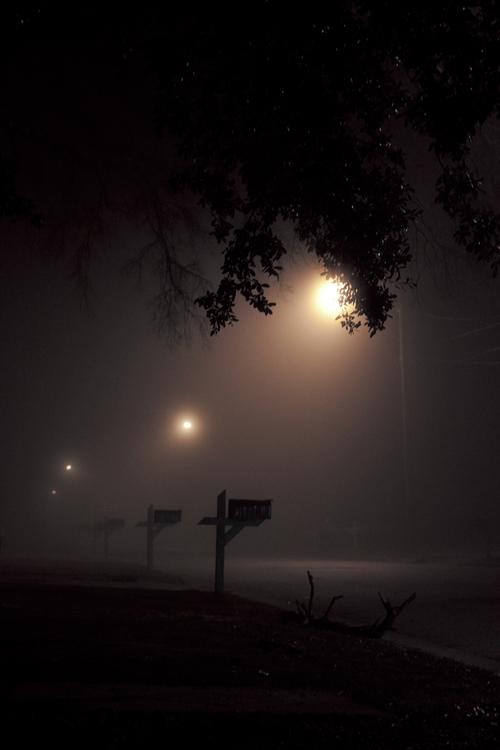 004_Cool_Fog.jpg