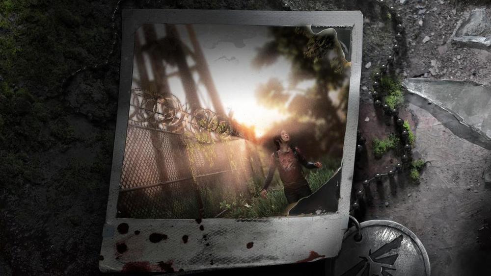 1 Wasteland Wonder.jpg