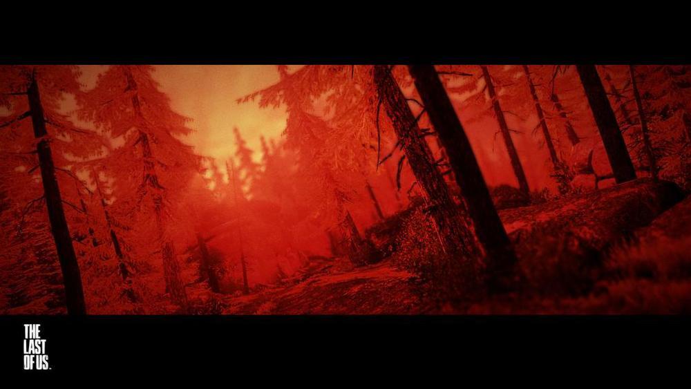 12 Wooded Trail.jpg