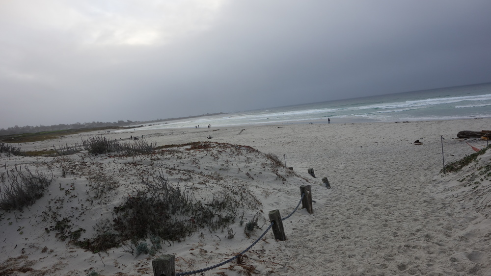 In this case, the end of the Asilomar path leads to an amazing place... the shore and the vast Pacific Ocean.