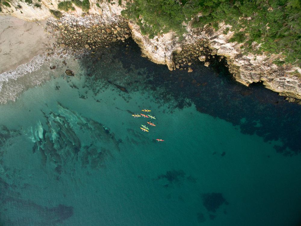 NZ sunrise swim 17-0393.jpg