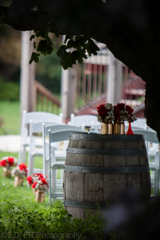 Fairfield_wedding_Minis-20.JPG