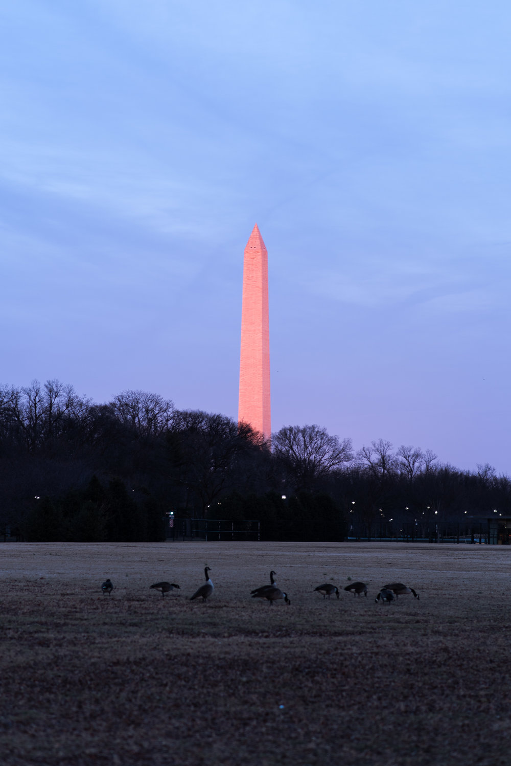 DC_Photo_Walk-12.jpg