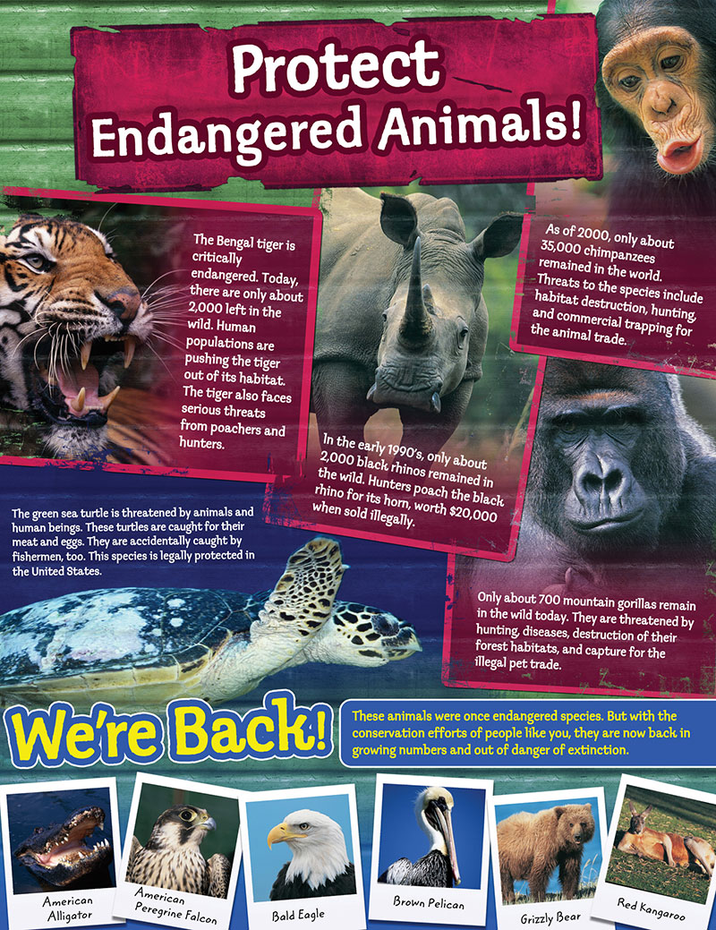 endangered species should not be protected essay You have not saved any essays in 1973 to protect endangered or threatened species and their that allowed endangered animals to be protected from.
