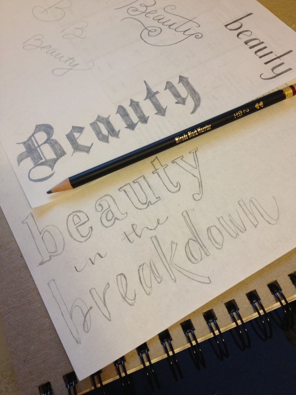 day 70 beauty sketch.JPG