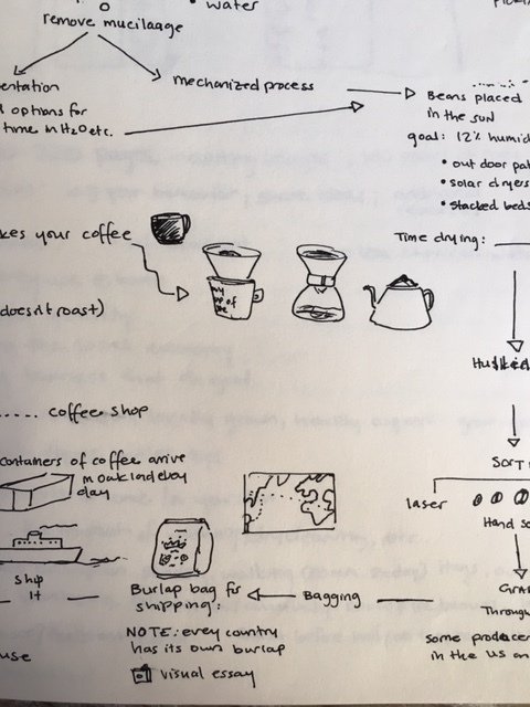 Coffee-Process-3.JPG