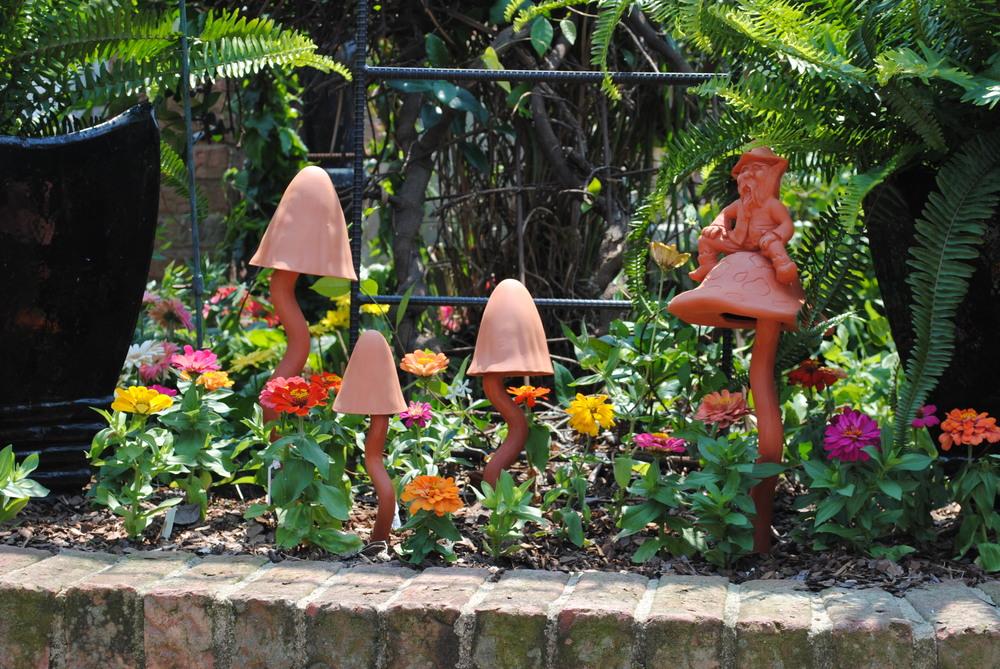 muchroom garden.JPG