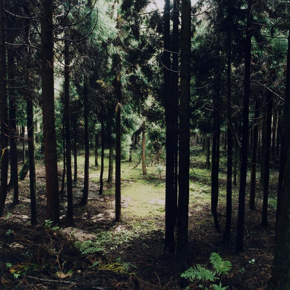20120215_0025.jpg