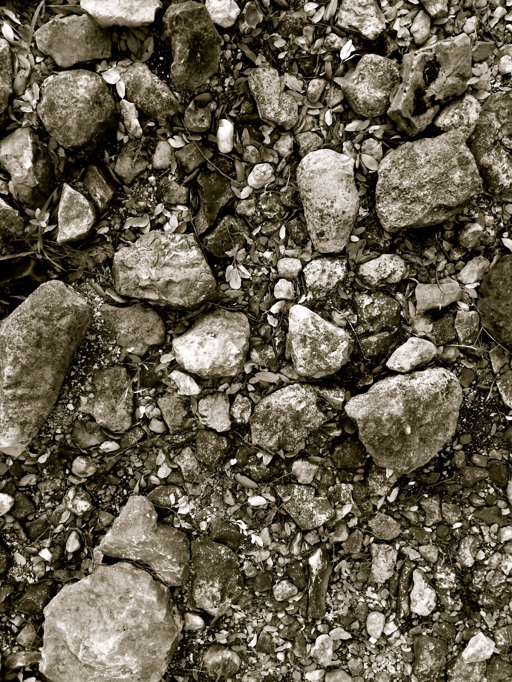 Look Down Rocks Texture