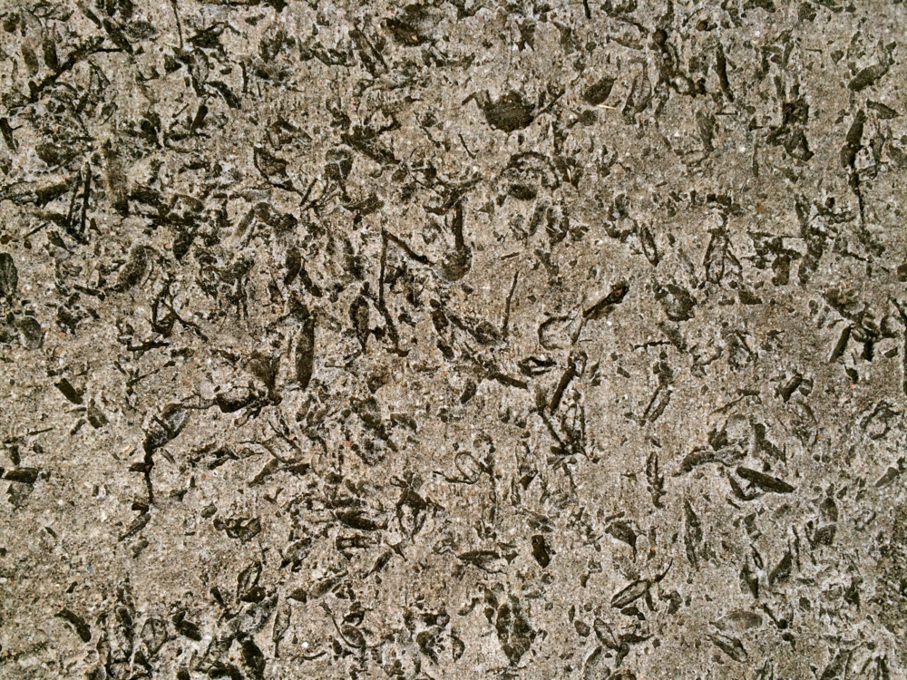 Look Down Concrete Texture