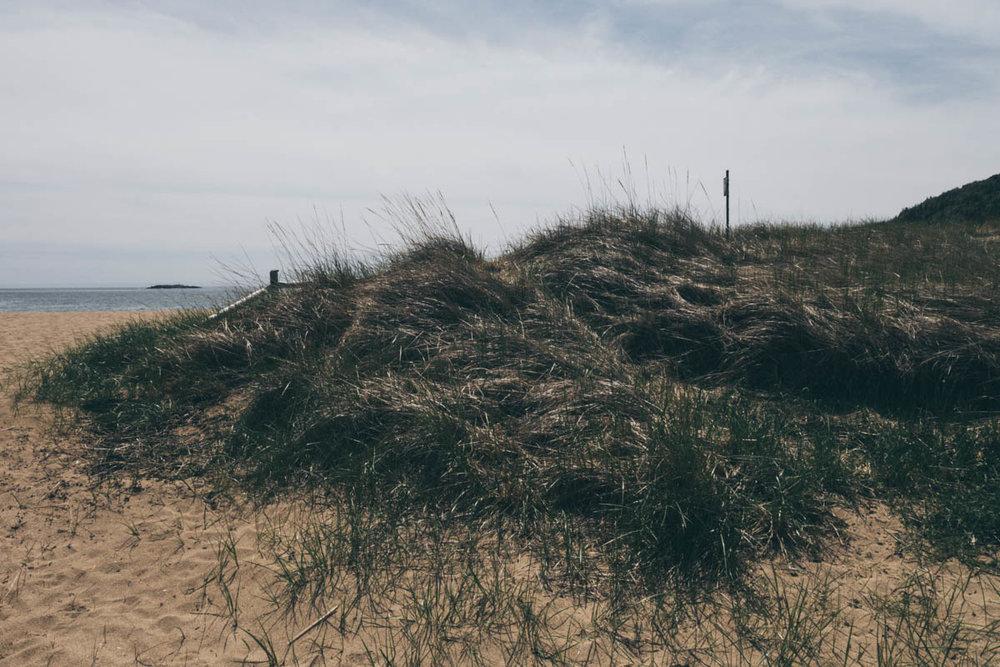 Sand Beach
