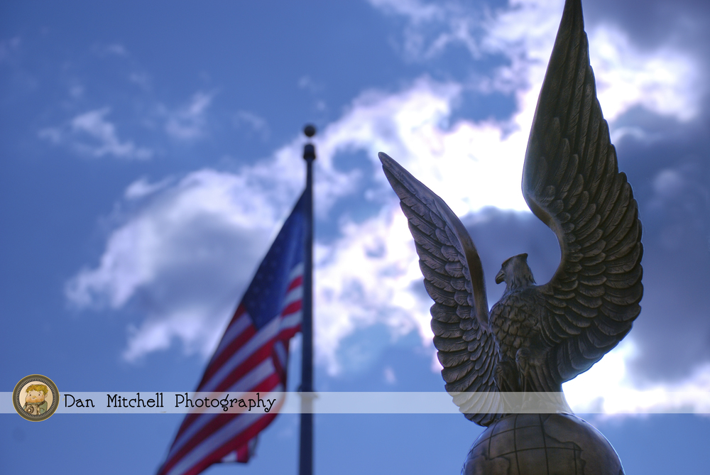 American_eagle copy.jpg
