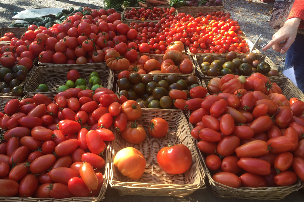 September, London: All the tomatoes at my local market, Brockley Market.