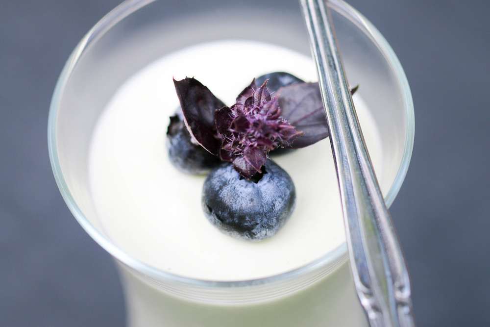 basil yogurt panna cotta.jpg
