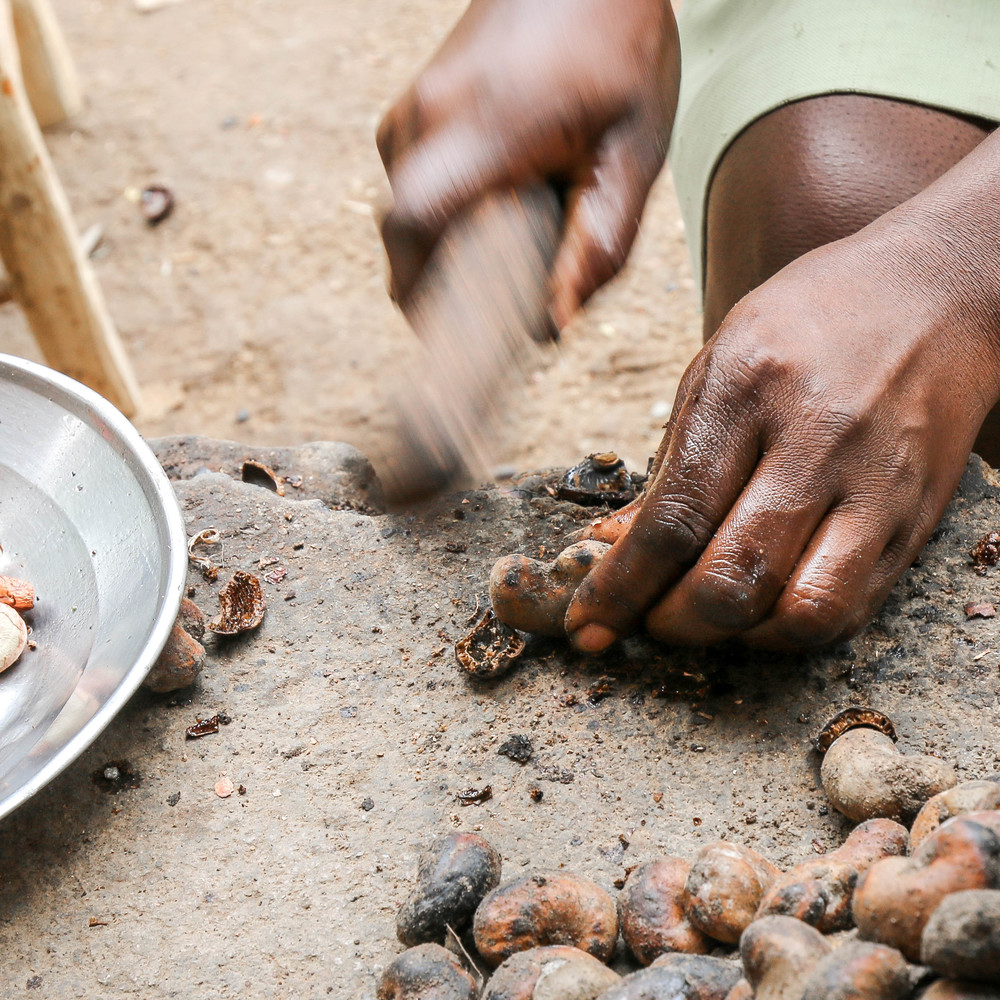 The roasted nuts are then hand-shelled and cleaned once again -- Mombin Crochu, Haiti