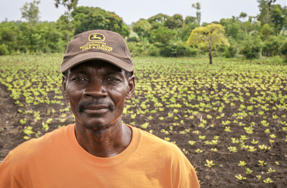 Joseph Janay, PDL farmer in front of his peanut crop in Sanyago, Haiti.