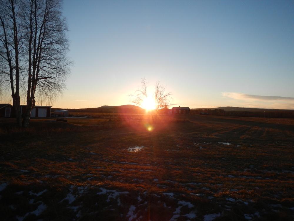 Startade med solen, i vad som INTE kan räknas som typiskt vinterlandskap.