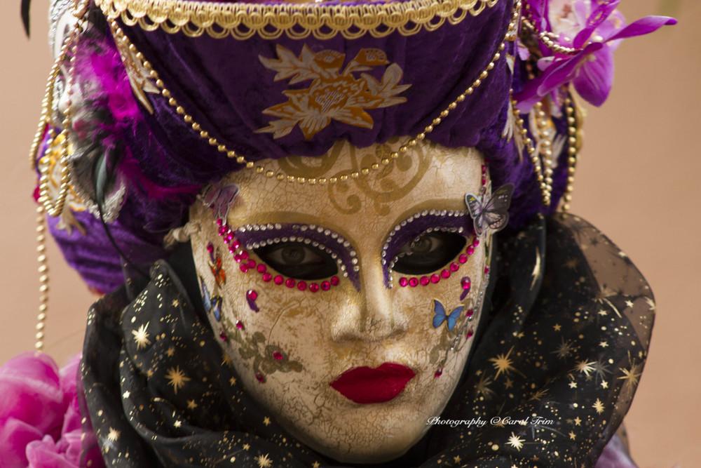 venetian pink lady
