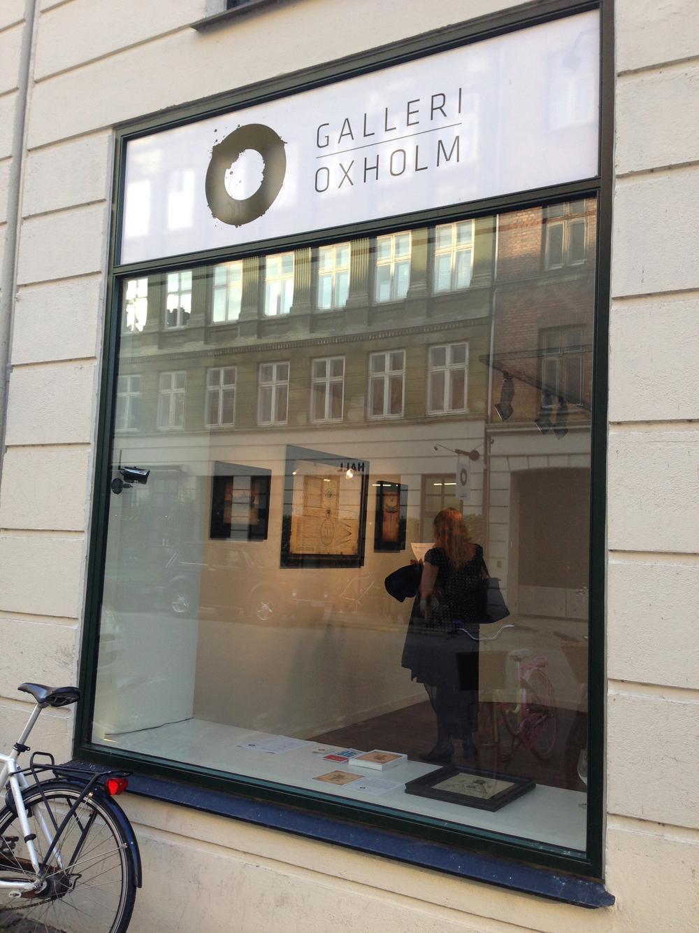 Oxholm Gallery HALL,  Ravnsborggade 6, 2200 Copenhagen N, Denmark                   Photo by Andreea Vlad
