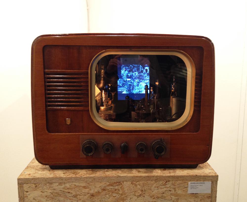 """1.  """"Diorama"""" 2014, Paulette In't Veld -  Galerie Judy Straten (NL)"""