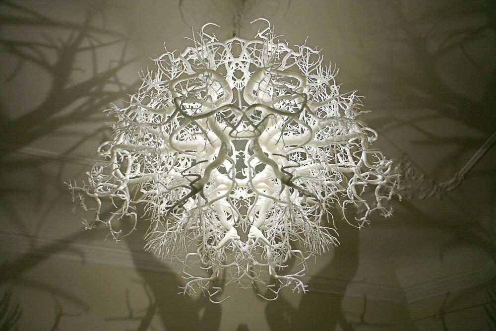 Forms in Nature Light , Sculpture,60 x 55 x 49 cm,HildenDiaz, 2011