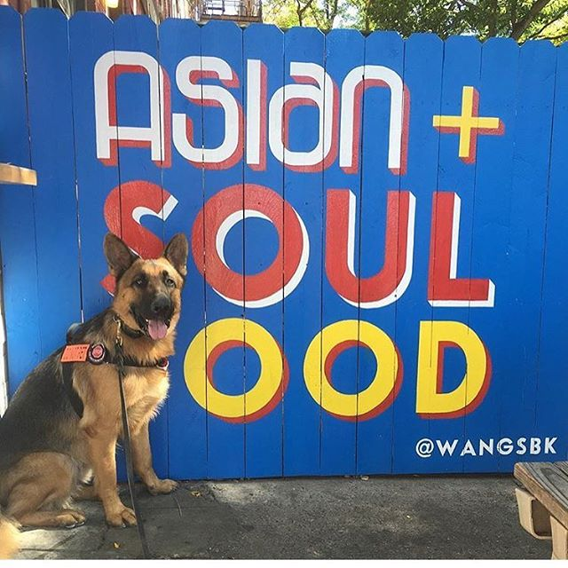 @meetthechows thank you for taking this awesome pic! Always such a pleasure to have you and your doggo at Wangs! #goodboy #eastmeetssouth #wangs #wings #southernasian #friedchicken #mmm #repost