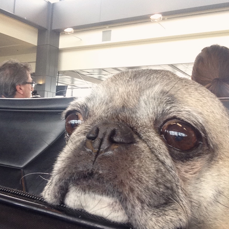 Waiting at Austin Airport