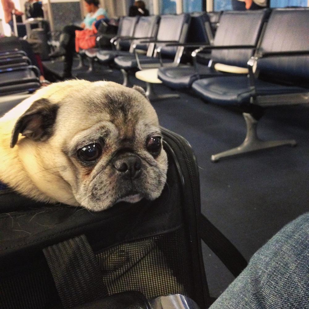 Waiting at Houston Airport