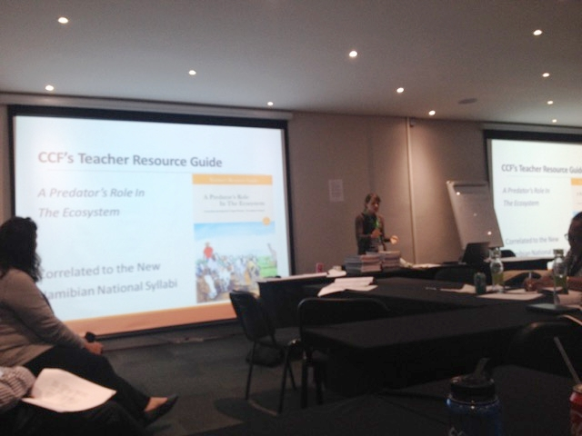 Stephanie presenting on new Resource Guide at EEASA Conference - Johannesburg, South Africa