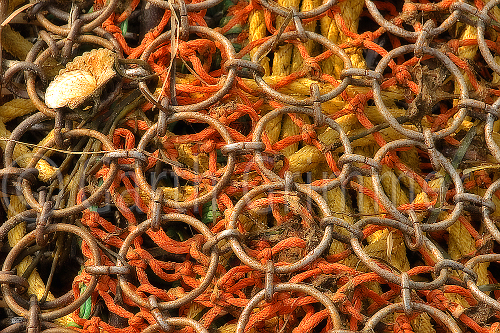 Scallop net
