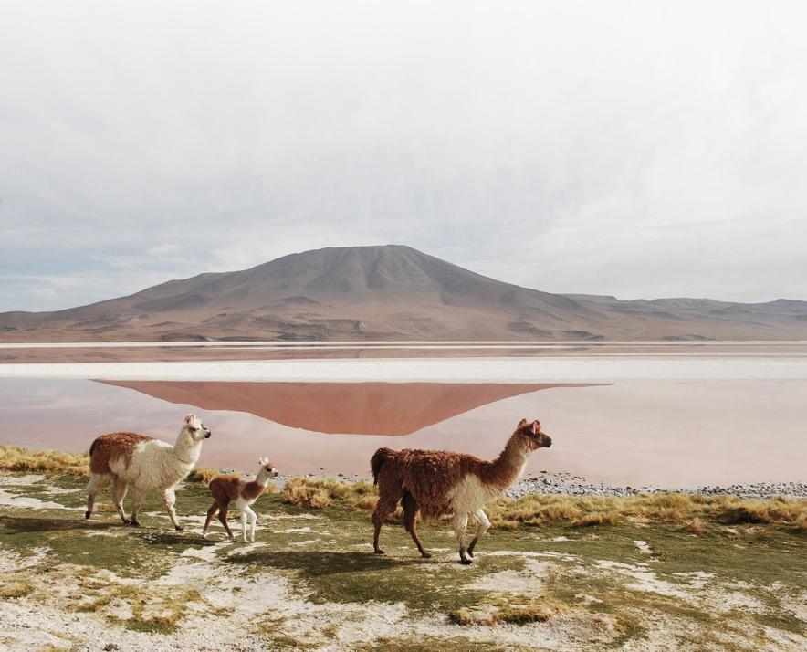 Bolivia landscape.jpg