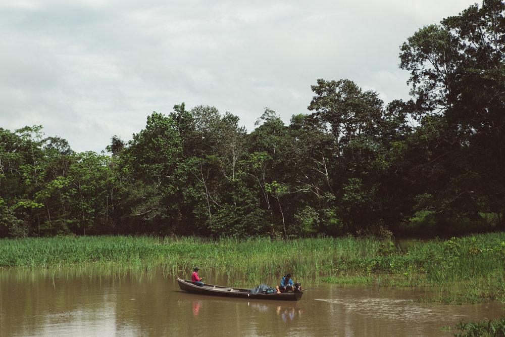 Amazonas_poem-8.jpg