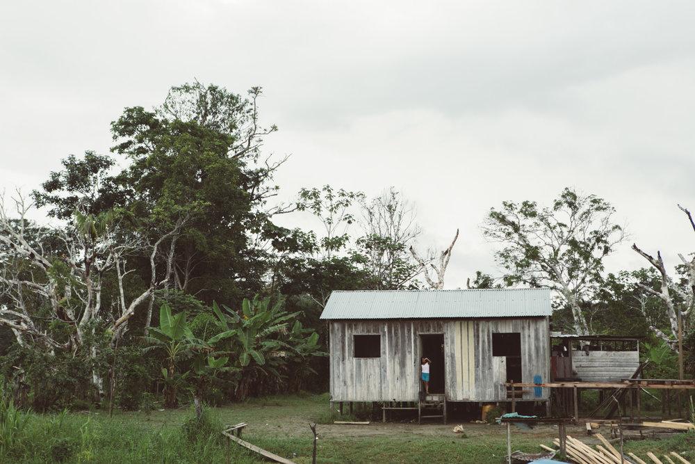 Amazonas_poem-3.jpg