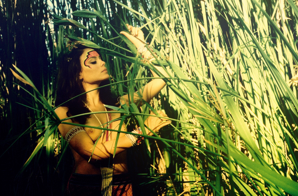 leaf love.jpg