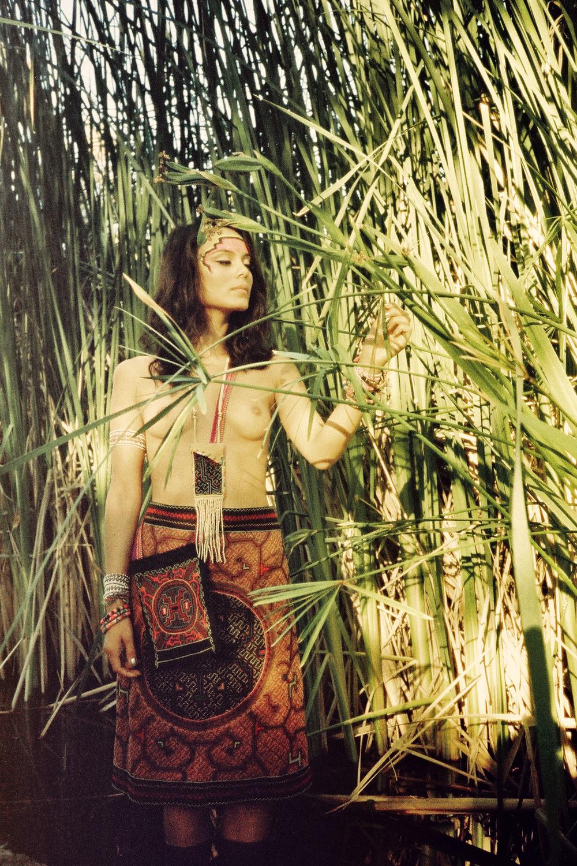 vibrant jungle.jpg