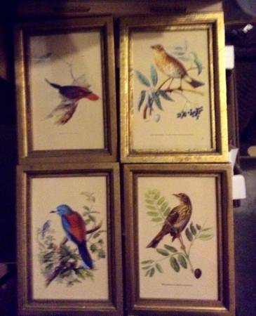 Set of 4 Bird Prints $20