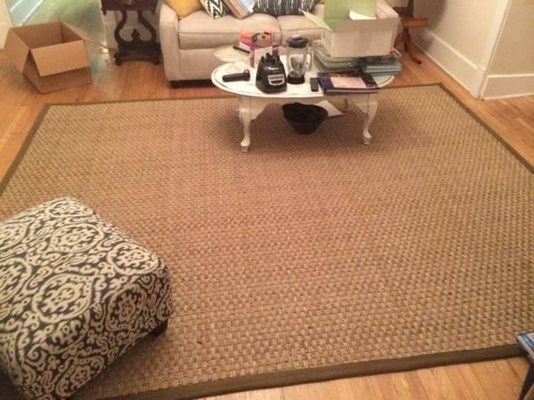 8' x 10' rug     $120     View on Craigslist