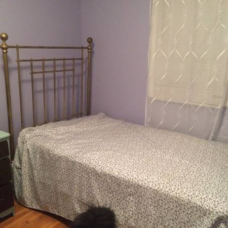 Victorian Twin Brass Bed     $400   This is a gorgeous brass bed and also includes a trundle.    View on Craigslist