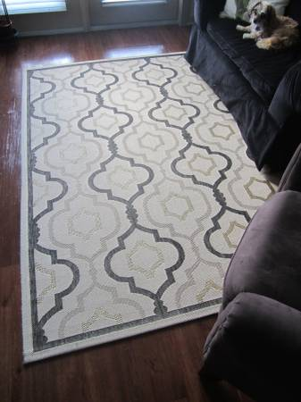 Ballard Designs Indoor/Outdoor Rug     $100     View on Craigslist