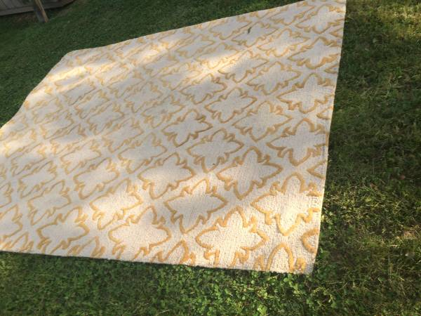9' x 7' Wool Rug     $100     View on Craigslist