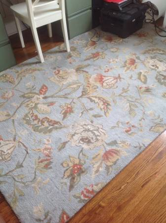 Pottery Barn 5' x 8' Rug     $100     View on Craigslist