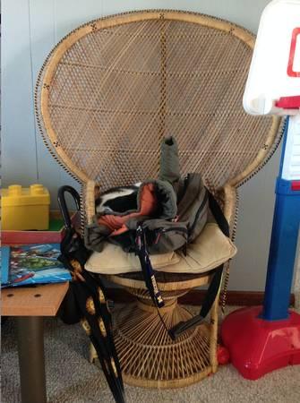 Peacock Chair $20 View on Craigslist
