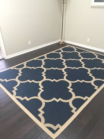 6' x 9' Rug $100 View on Craigslist