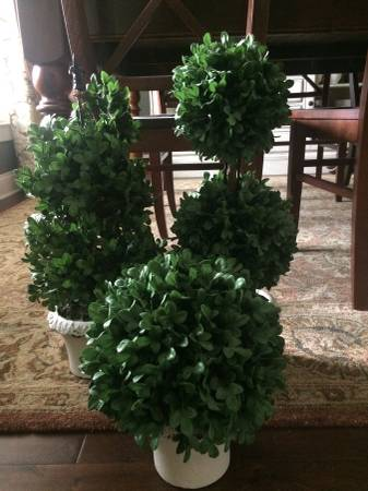 Ballard Boxwood Topiaries     $35     View on Craigslist