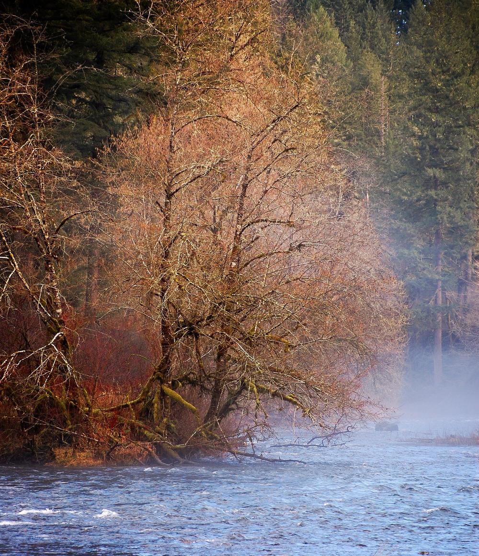 Turn of the river.jpg