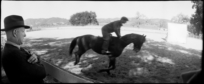 Training Biscuit, on the set of Seabiscuit , 2003