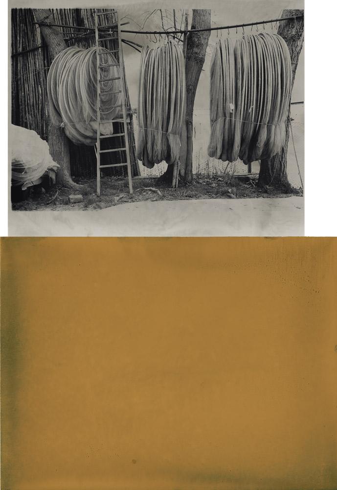 Secco/Quiet , 2008