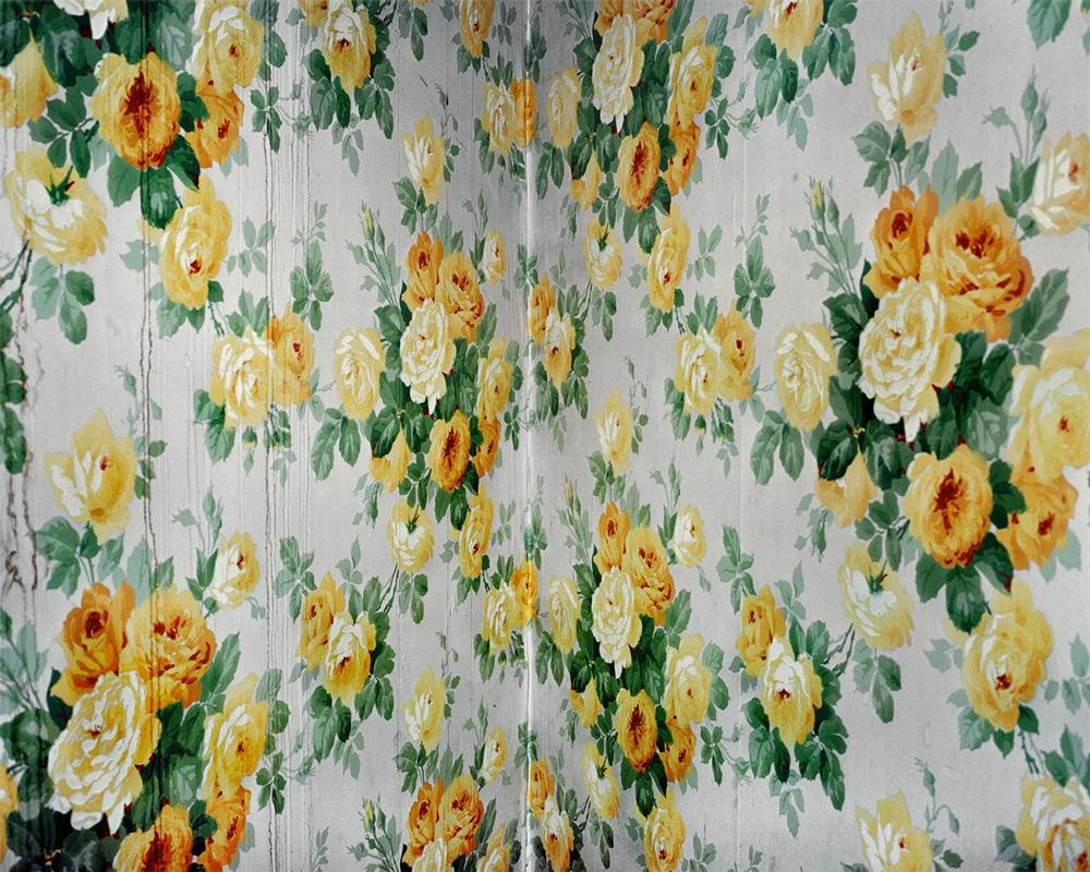 Falling Flowers  , 2008